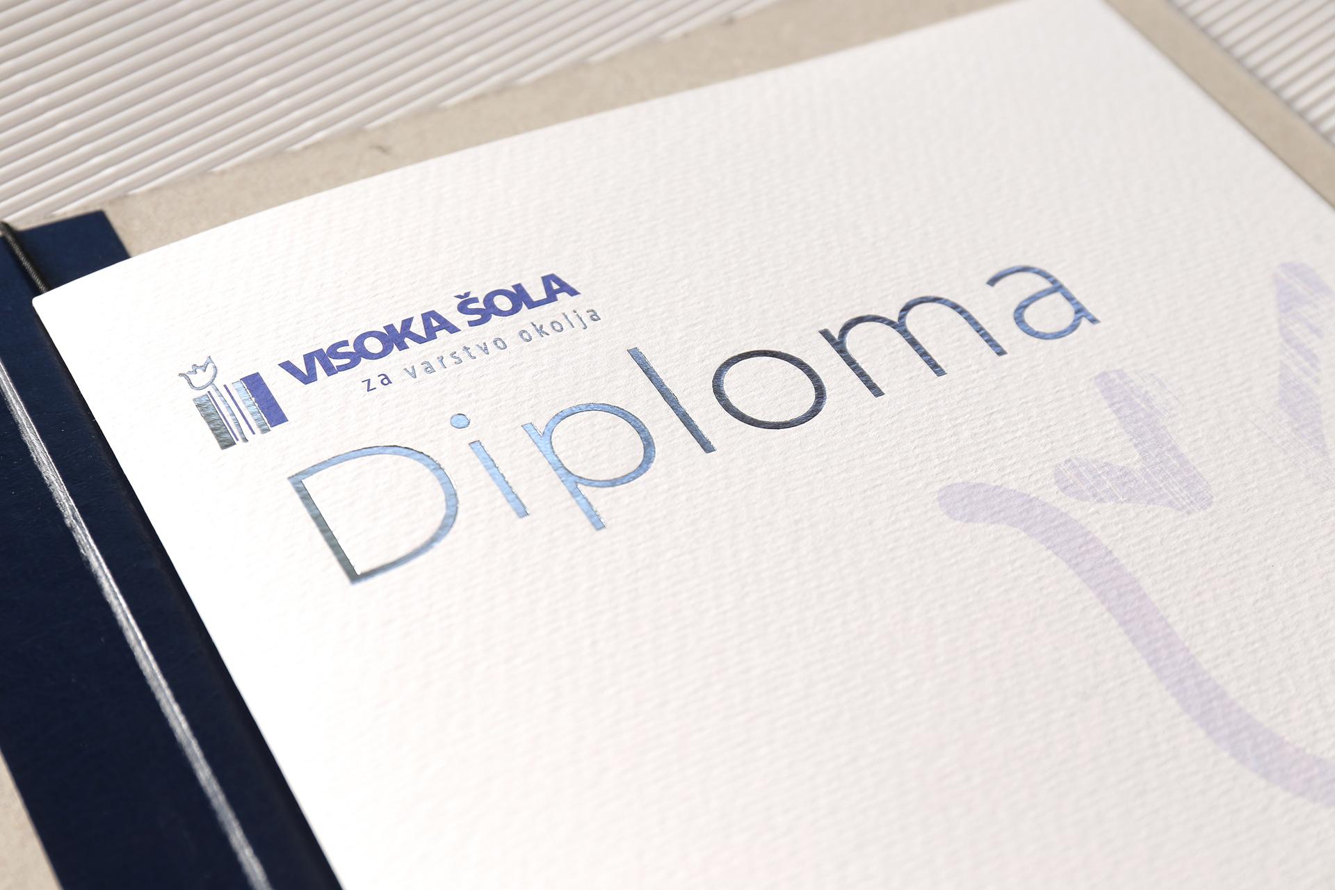 vsvo_diploma_vsvo_2