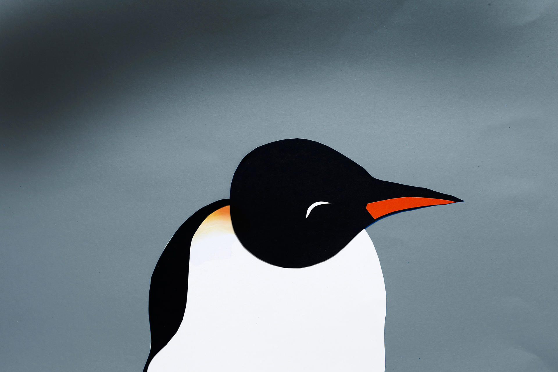 film_pingvini_marinsek_stopmotion_10