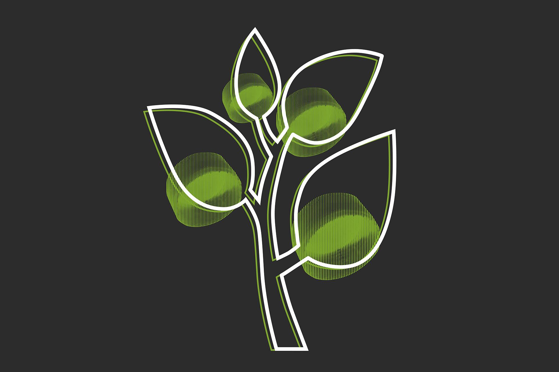 podoba_drevo_rasti_gorenje